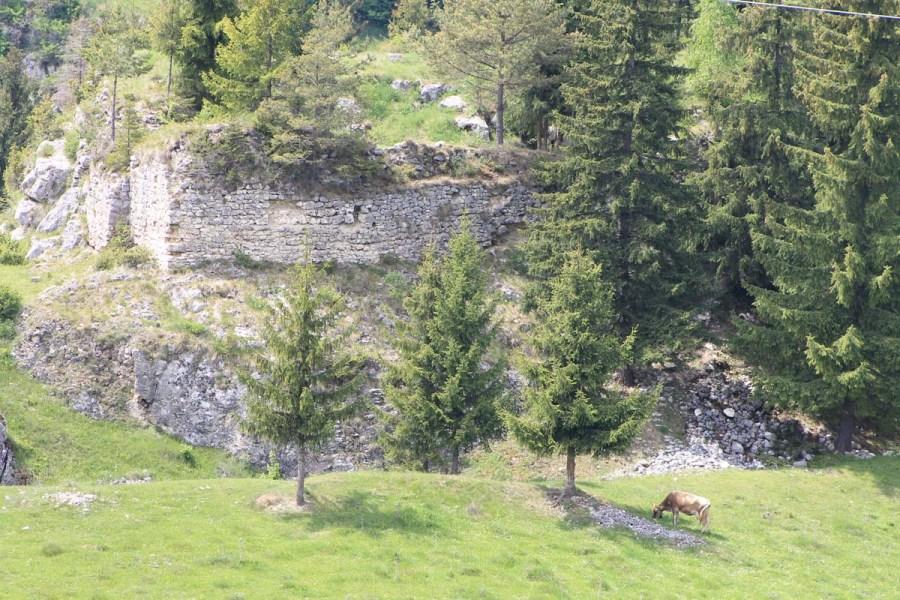 Fortress Oratea